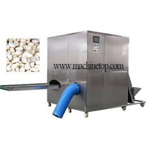 Hot Sale Garlic Peeling Machin