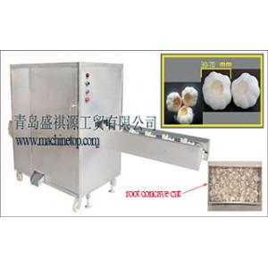 Supply Garlic Root Concave Cut