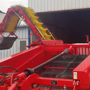 Potato harvester machine