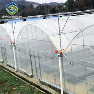 Agricultural/Commercial Plastic Greenhouse