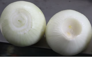 Onion Root Concave Cutter