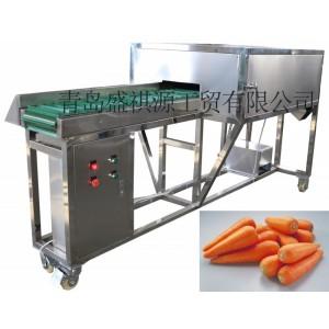 Hot sale Carrot Ends Cut Machi